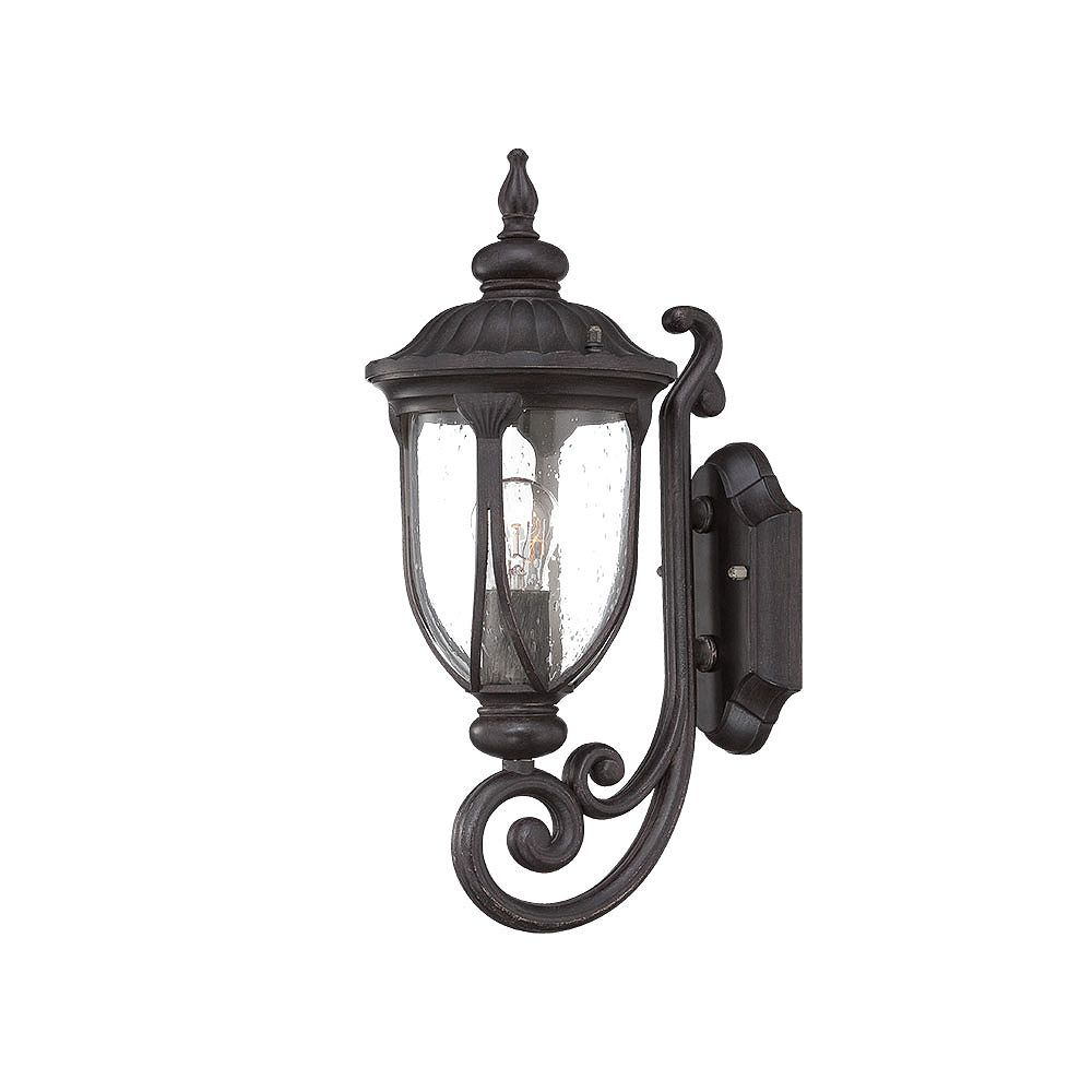 Acclaim Lighting Laurens 100W 1-Light Coral Black outdoor Wall Mount