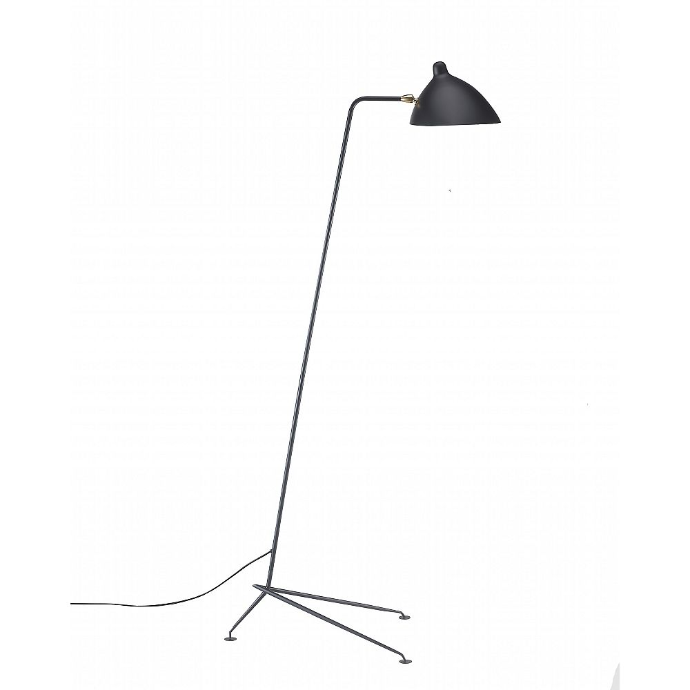 Living Design 63-inch Heihgt 1-Light Black Floor Lamp With Black Aluminum Shade