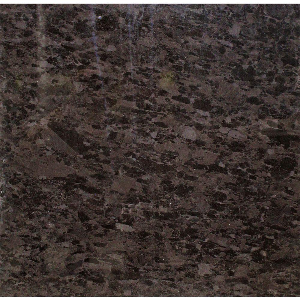 STI Splendente Marron Antique 24- x 24-pouce poli rectifié porcelaine tuile (16 pied carré / caisse)