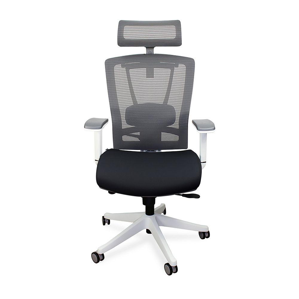 Autonomous Chaise de bureau ergonomique haut de gamme - noir et blanc