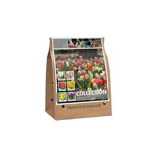Spring Border Collection