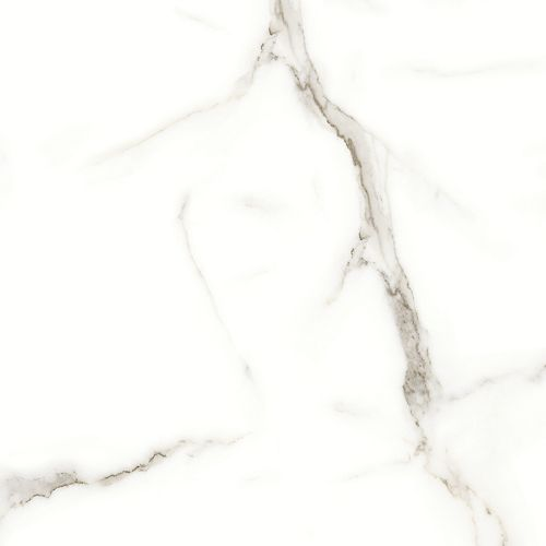 24-inch x 24-inch Calacatta Oro Polished Rectified Porcelain Tile (15.5 sq.ft./case)