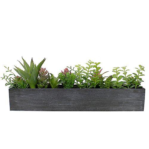 """23 """"Plantes succulentes mixtes artificielles dans une jardinière rectangulaire"""