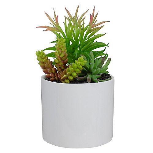 """Arrangement succulent artificiel 9 """"en pot en céramique blanche"""
