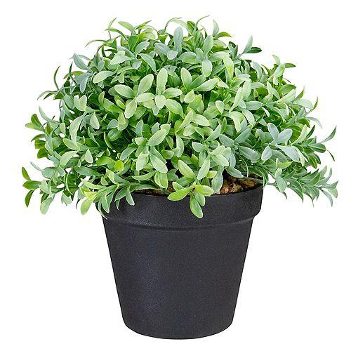 Plante de box-box artificielle verte de 7,5 po